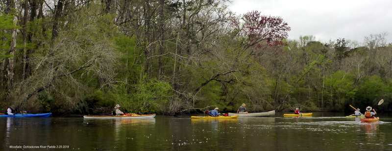 Ten Paddlers From The Apalachee Canoe And Kayak Club Left The Woodlake  Landing On The East Side Of The Ochlockonee River (Apalachicola National  Forest) To ...